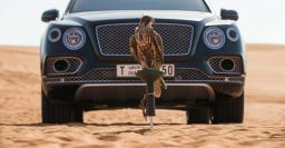 Bentley Bentayga Falconry Kit woos rich Middle Eastern oil sheikhs
