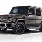 Mercedes-AMG G63 and G65 Exclusive Edition (2017, W463) photos