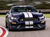2019 Ford Mustang Shelby GT350 - grille