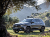 2020 Mercedes-AMG GLE53 4Matic+