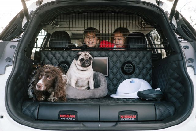 2017 Nissan X-Trail 4Dogs concept - trunk with dogs